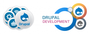 Drupal Development Company in Coimbatore