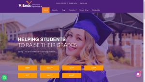 vibedu-international-education